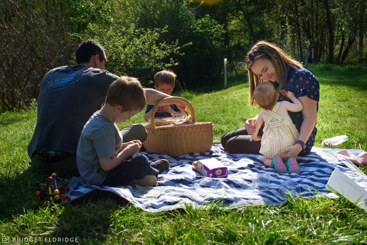 family has a picnic together