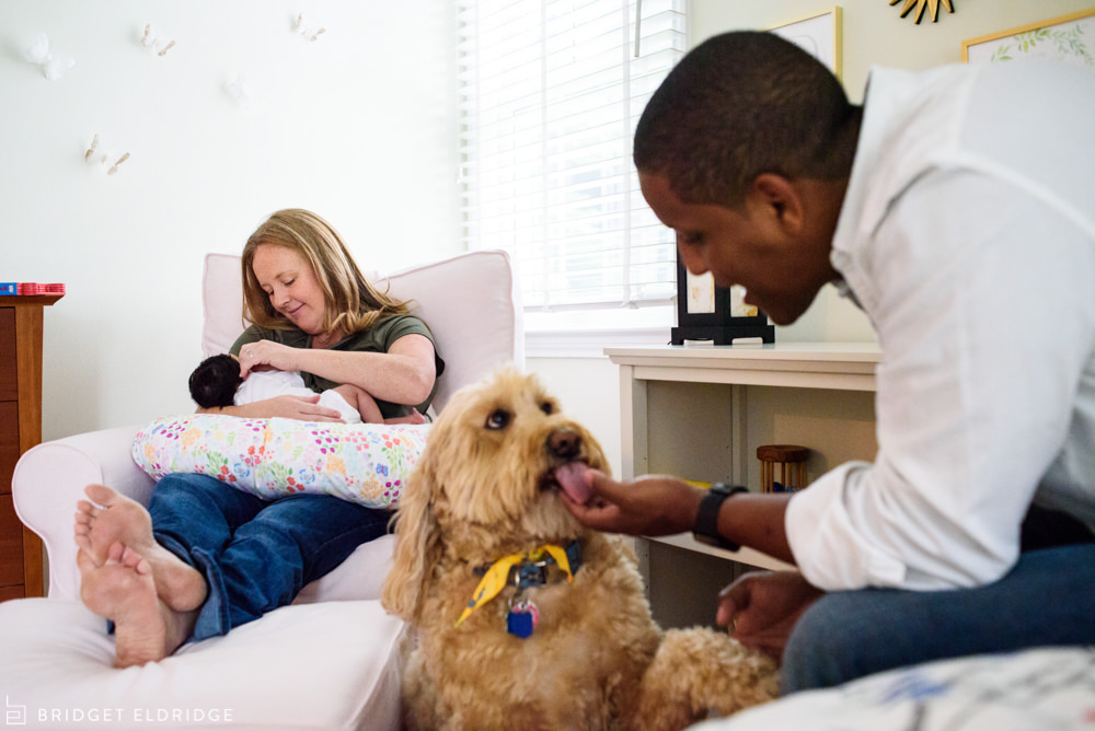 dad plays with the family dog while mom nurses their newborn
