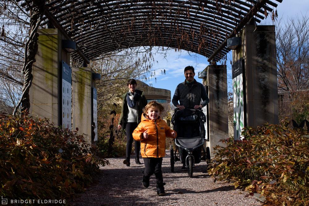 boy runs under a treillis in the us botanic garden