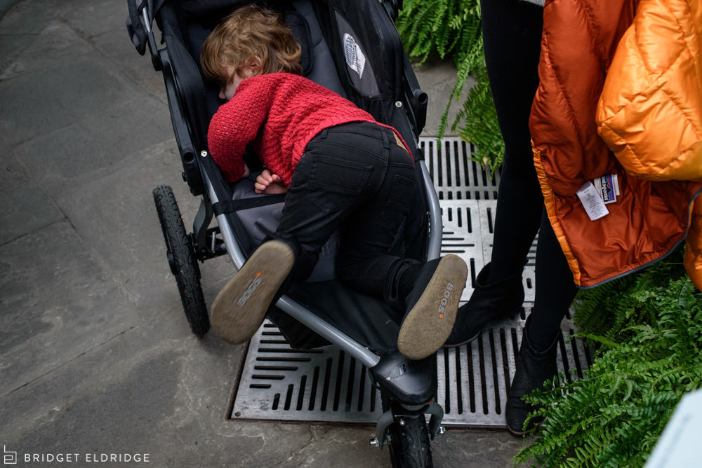 boy climbs into his stroller after a visit to the us botanic gardens