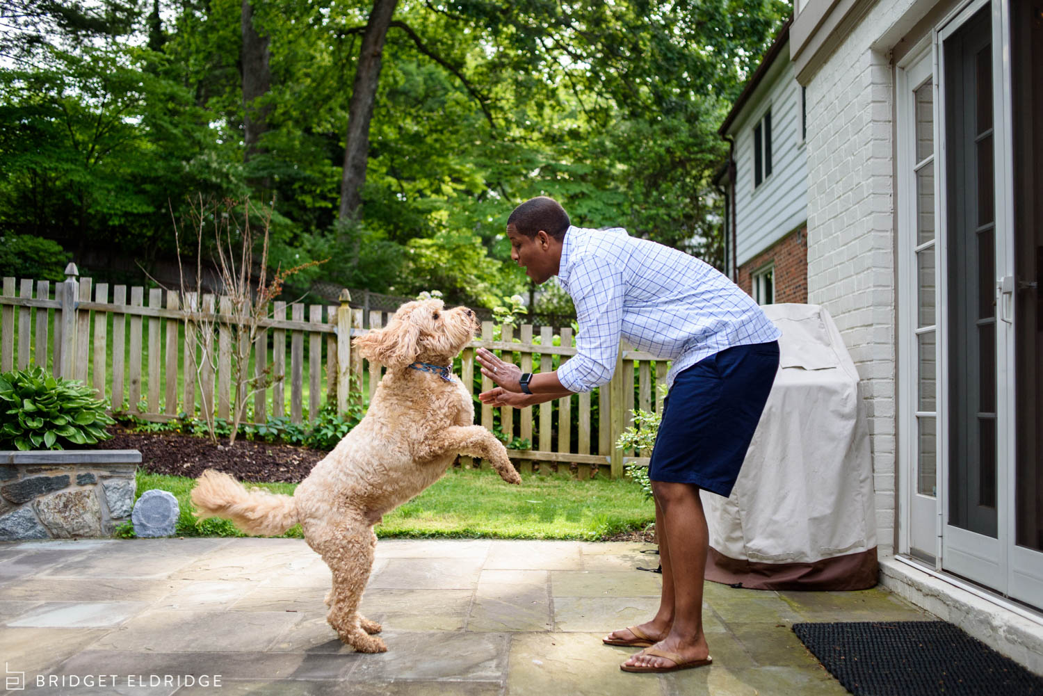 dad gives his dog a high five in exchange for a treat