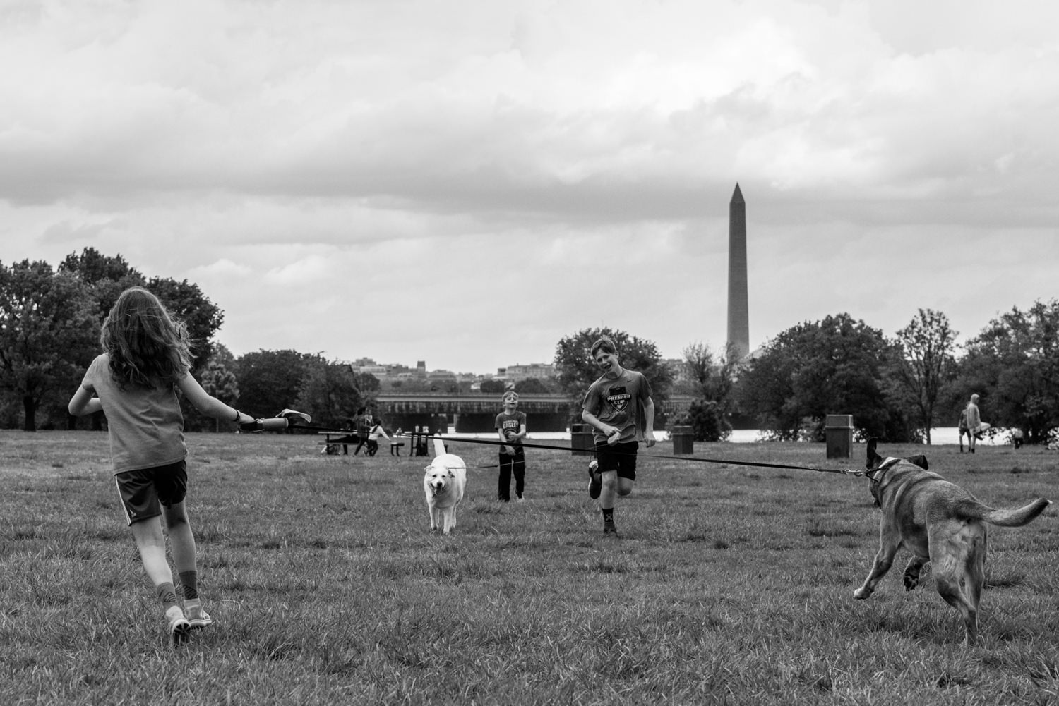kids run with dogs at gravelly point park in arlington, va