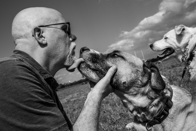 dog gives a kiss