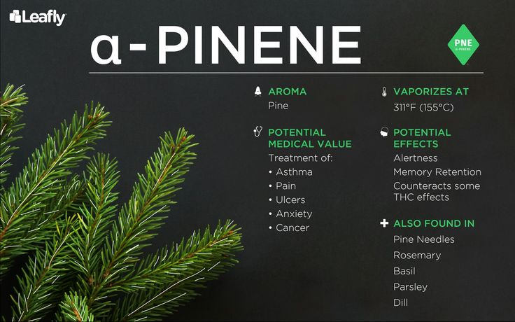 alpha Pinene -