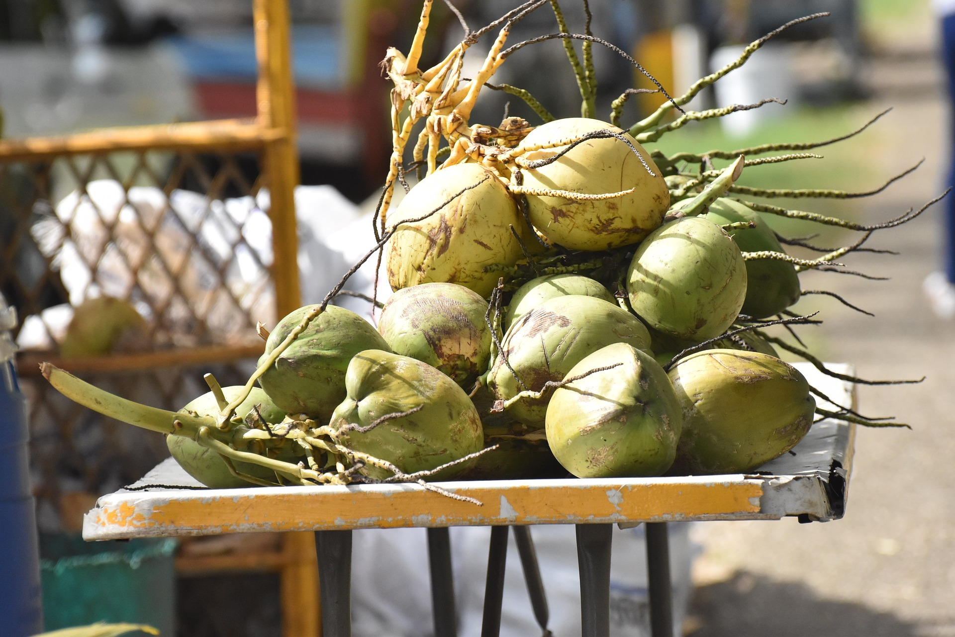 coconuts-1677275_1920.jpg