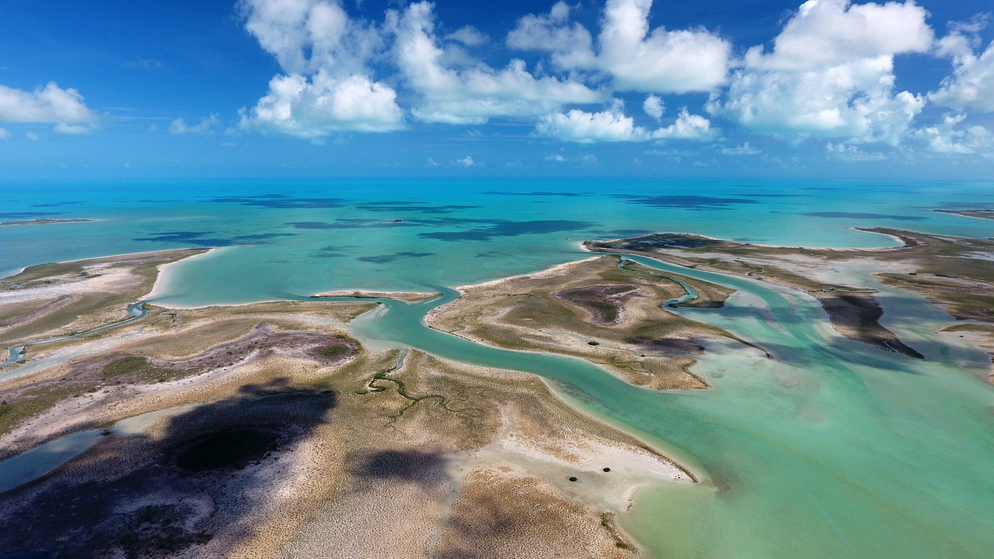 Andros Island - Bahamas - Photo by Michael Scholl - © Save Our Seas Foundation Copyright - DJI_0036.jpg