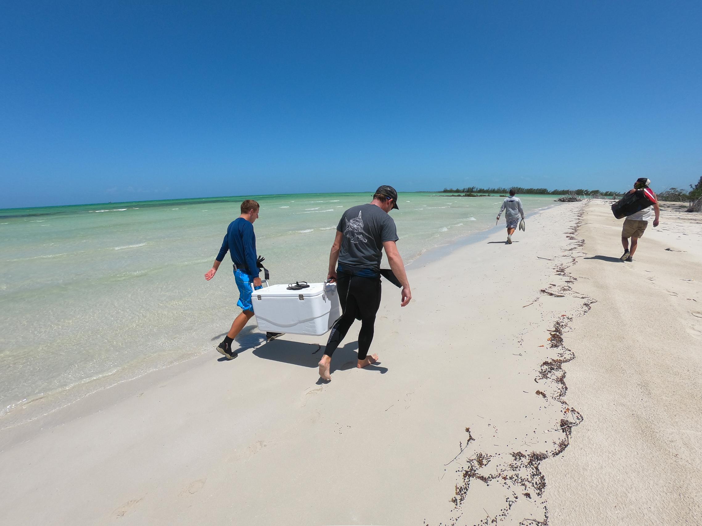 Guests prepare to explore a potential sawfish location