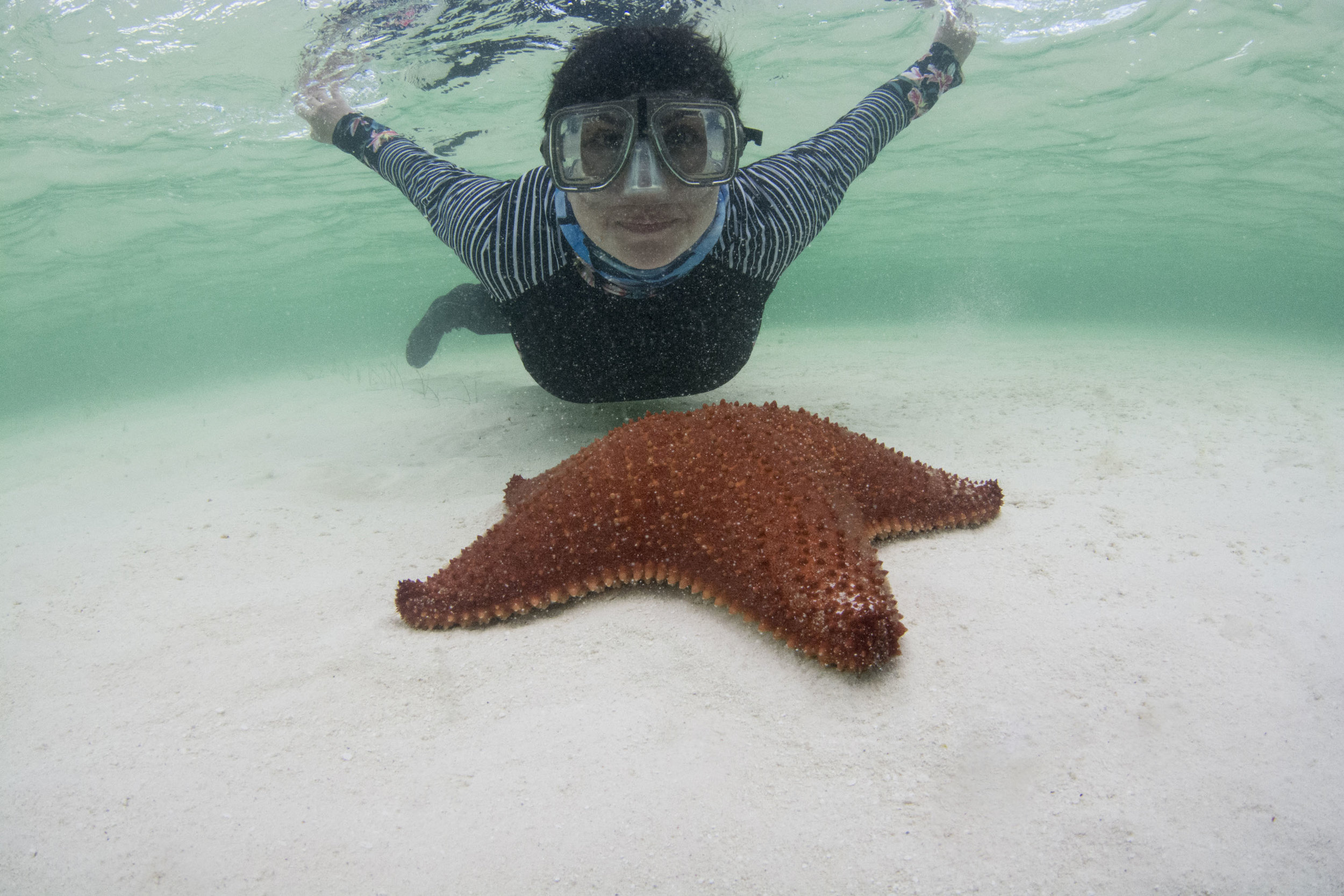 Expedition guest Vanessa with a red cushion sea star