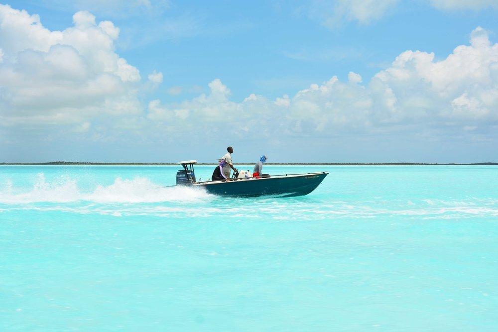 Silent Hunter - Annie Dr Tristan Guttridge -Sharks - Shark - Hammerhead - The Bahamas - Andros - Shark Diving - Eco - Eco Tourism - Bone fishing.jpeg