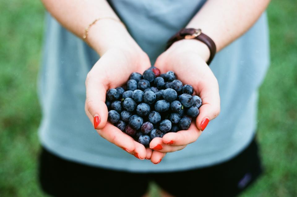 hands berries.jpg