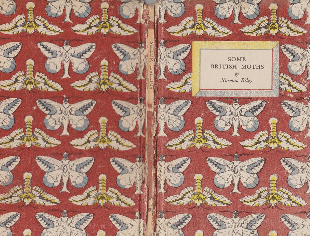 Enid Marx moths web.png