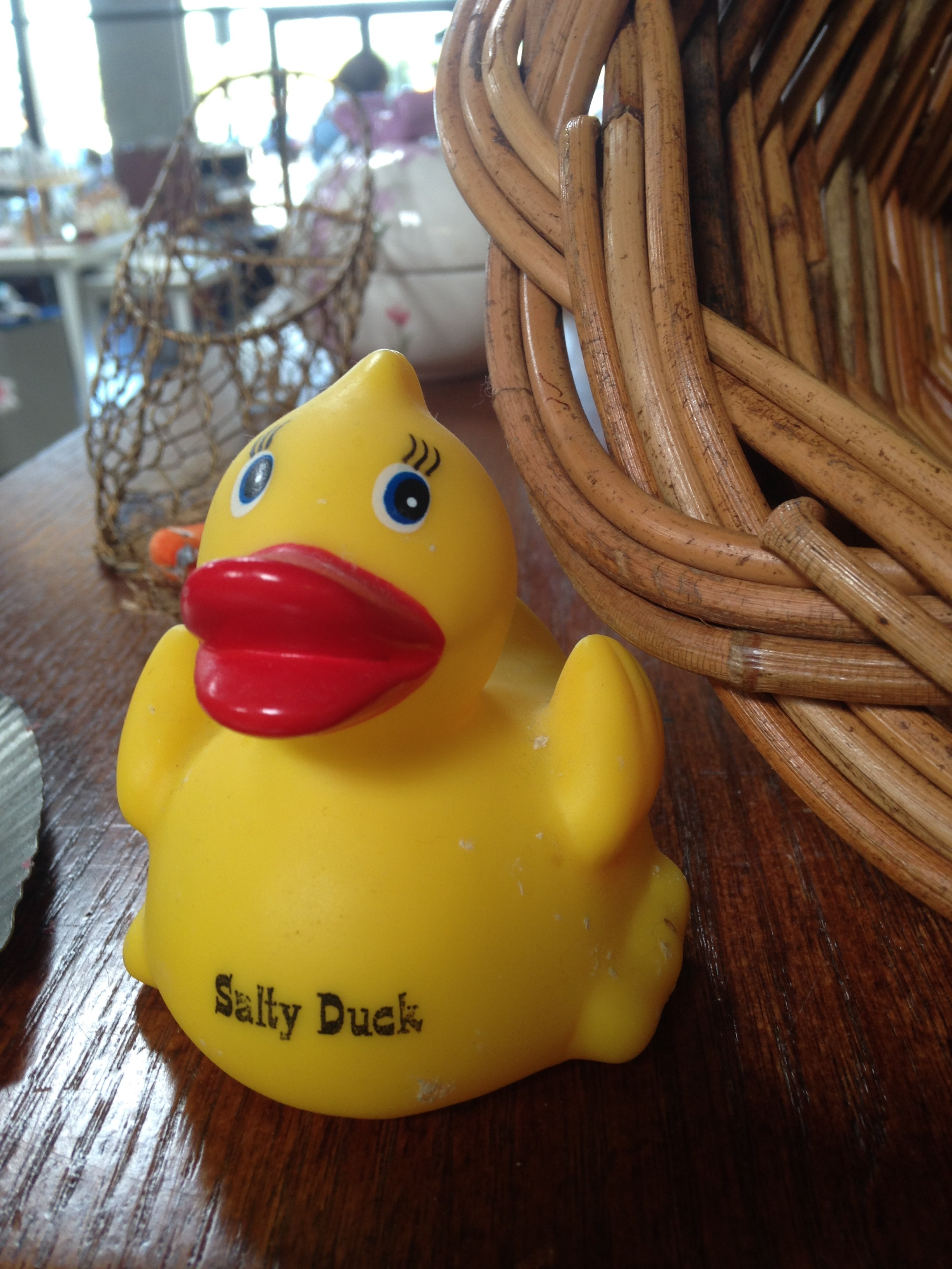 "Image of a ""salty duck"" that I took at a local thrift store. You never know what treasures you will find when thrifting."