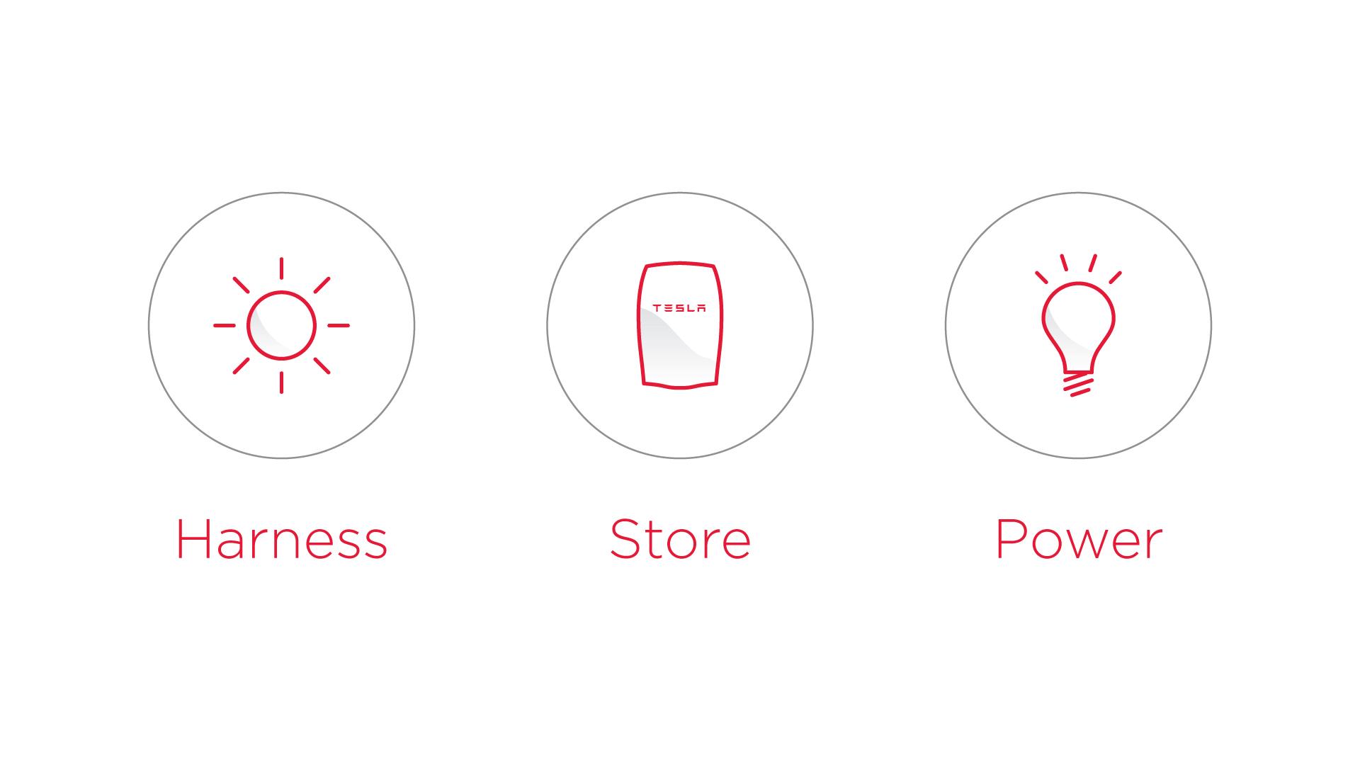 Harness-Store-Power.jpg