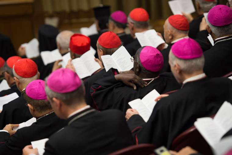 Bishops gathered at the 2015 Synod of bishops in Rome. Credit: Vatican Media.