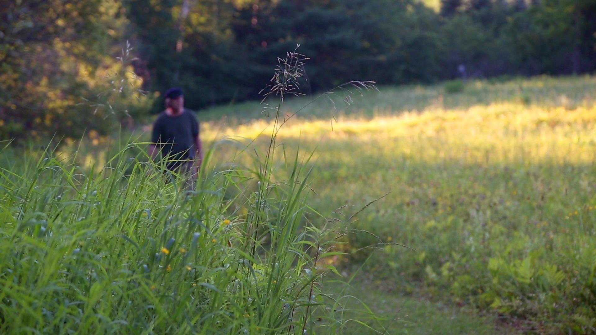 man in field.png