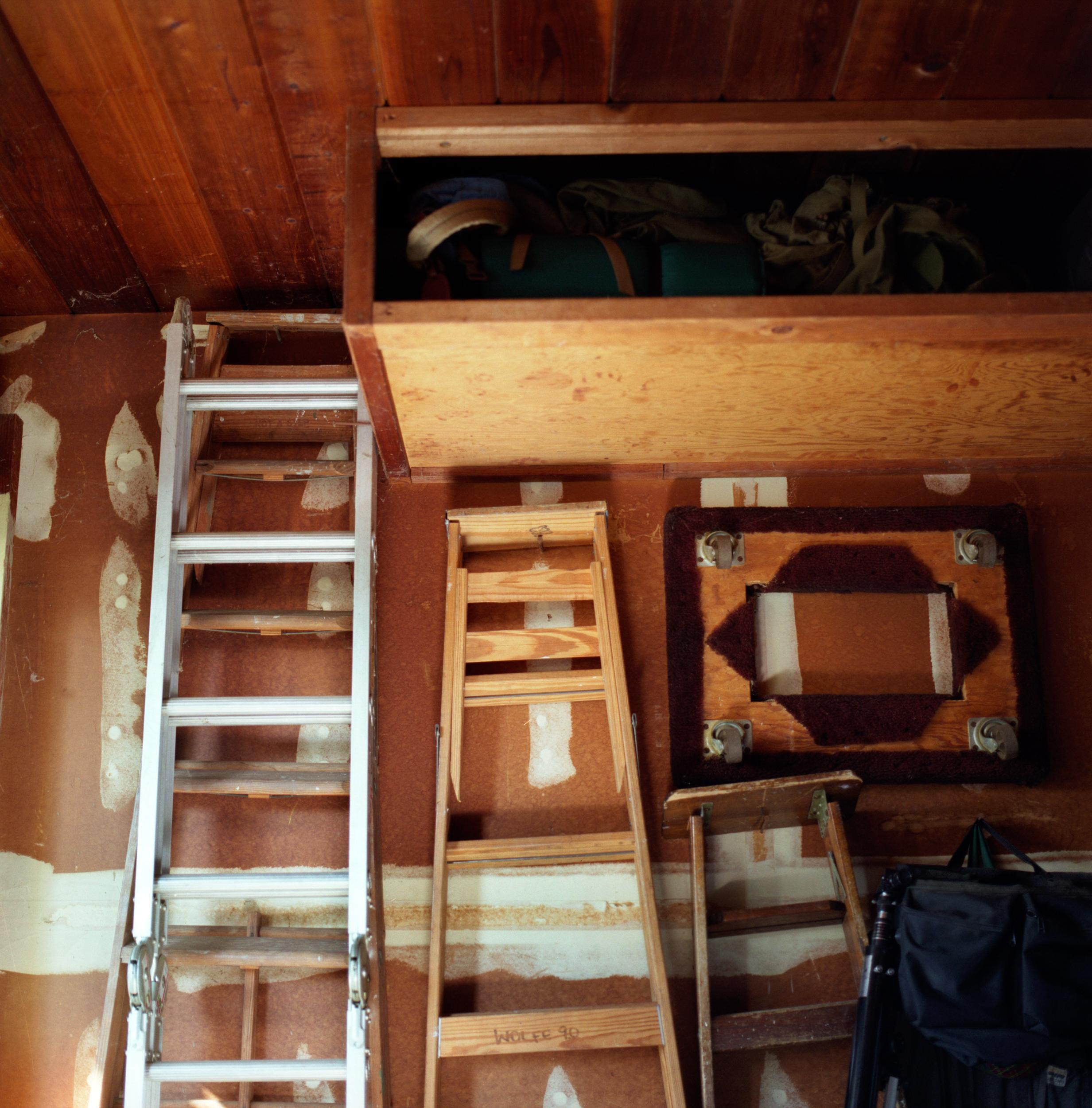 9_ladders.jpg