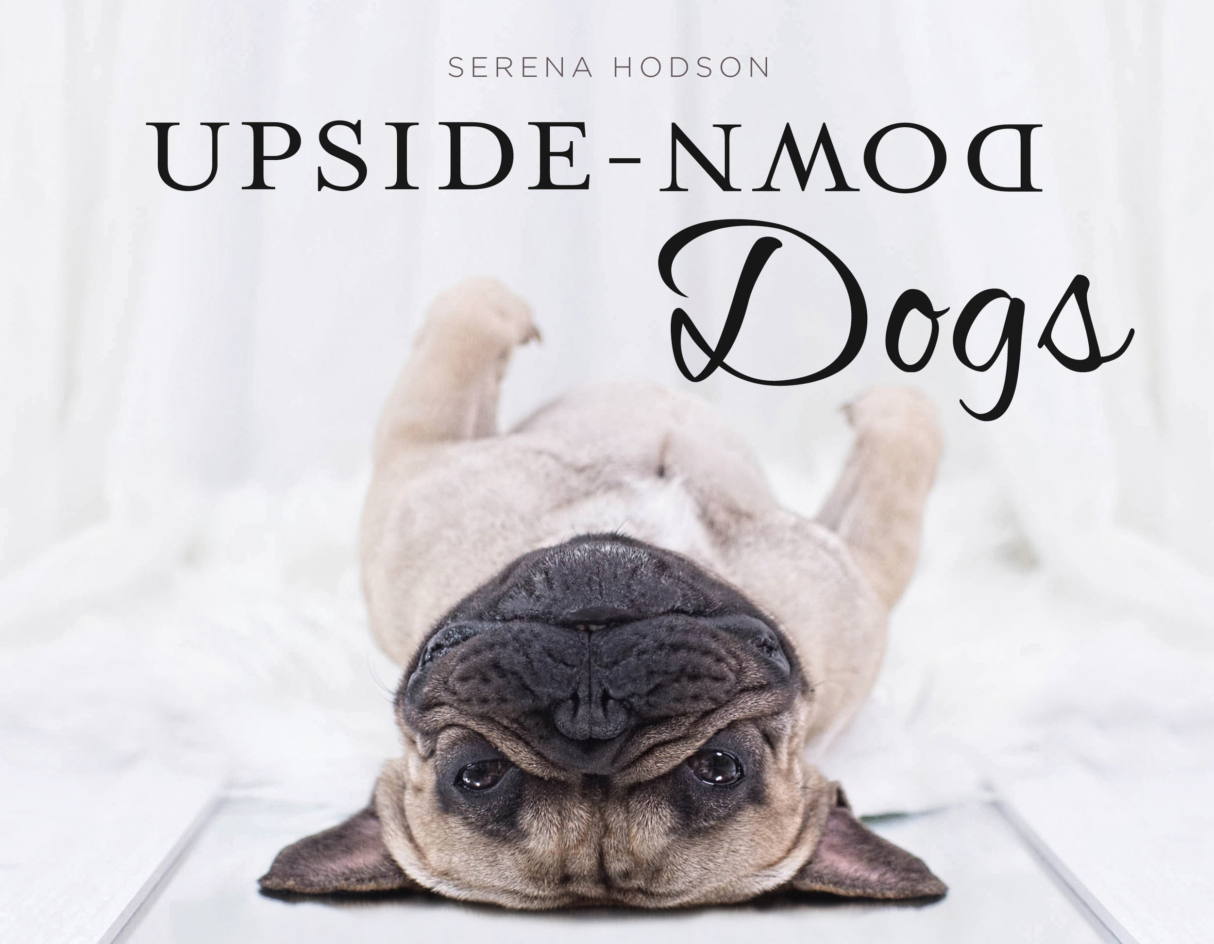 Upside Down Dogs - Serena Hodson Rating: 5 / 5