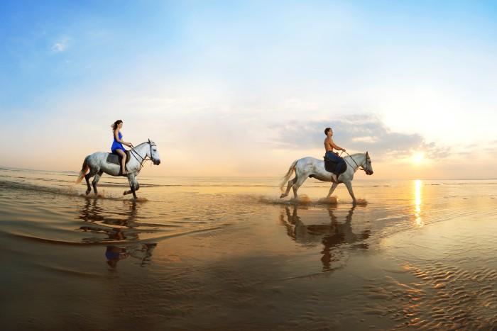 horse-riding-costa-rica.jpg