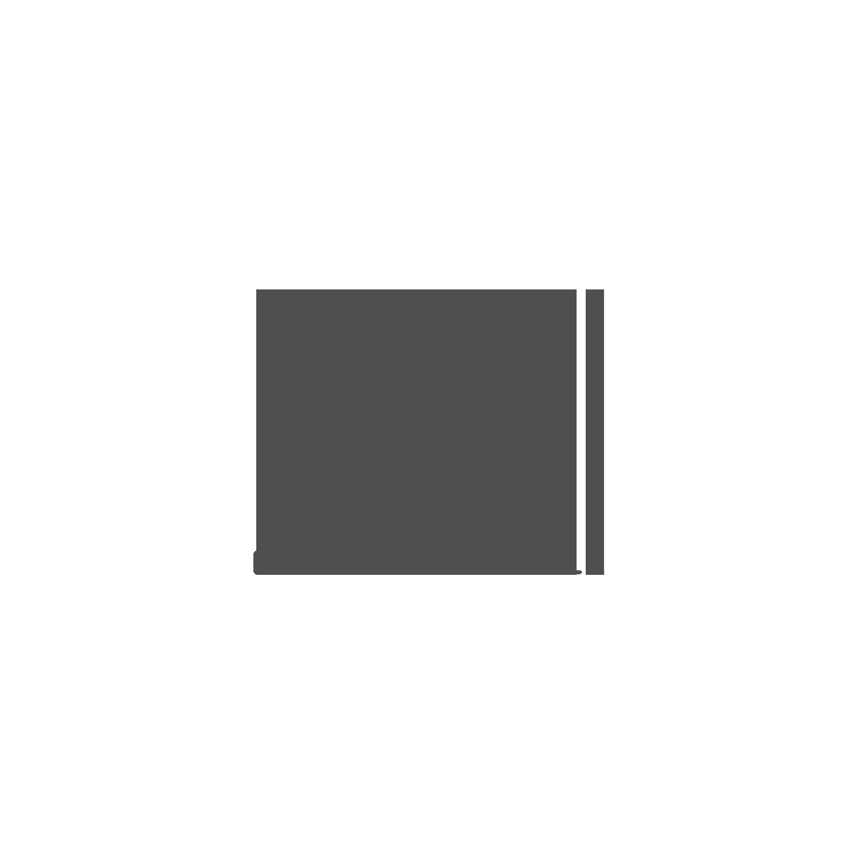 Danielle Nicole Logo.png