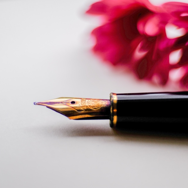 pen and red flower.jpg