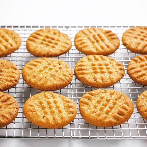 SALTED PEANUT BUTTER BISCUITS