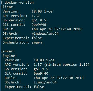 Docker version