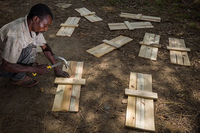 A few months ago we had the pleasure of hosting visitors from @wwfzambia and @wwf NL. @jasperdoest captured some beautiful shots of some of the work we do and we are so excited to share them! Pictured here is a builder putting together the bottoms of our hives. We currently have 6000 beehives under 600 farmers. More to come!  Photo credit: @jasperdoest  #honey #beehive #bee #bees #income #farmers #deforestation #zambia #savethebees #sustainable #localbusiness #wwf #wwfzambia #wwfnl #sustainablebeekeeping