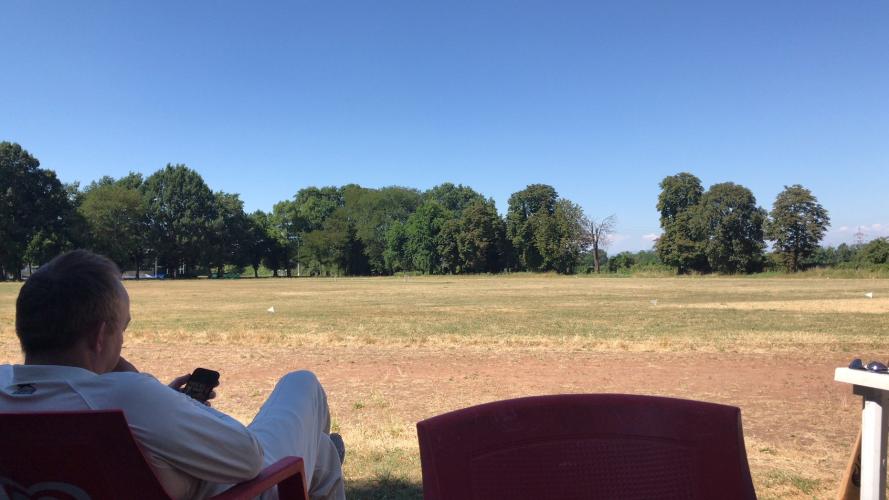 Cricket%201.png