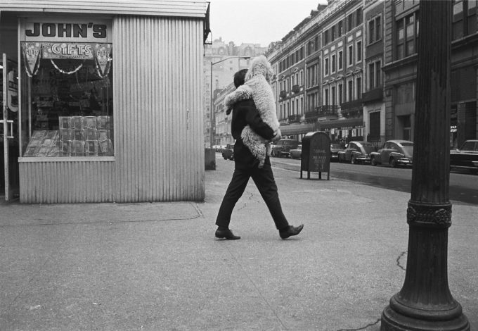 Grab a dog! Photo by  Joel Meyerowitz