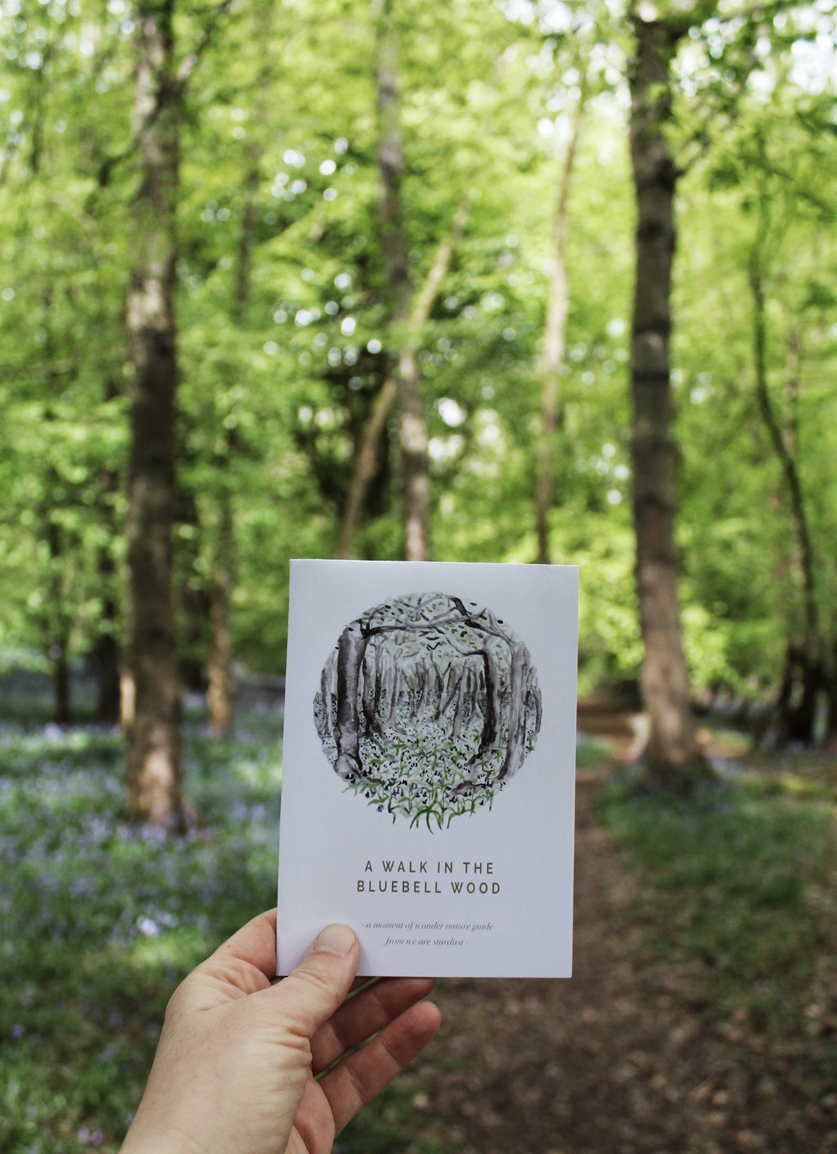 Agnes from  We are Stardust  has created a beautiful guide to walking in bluebell woods. Find it  here .