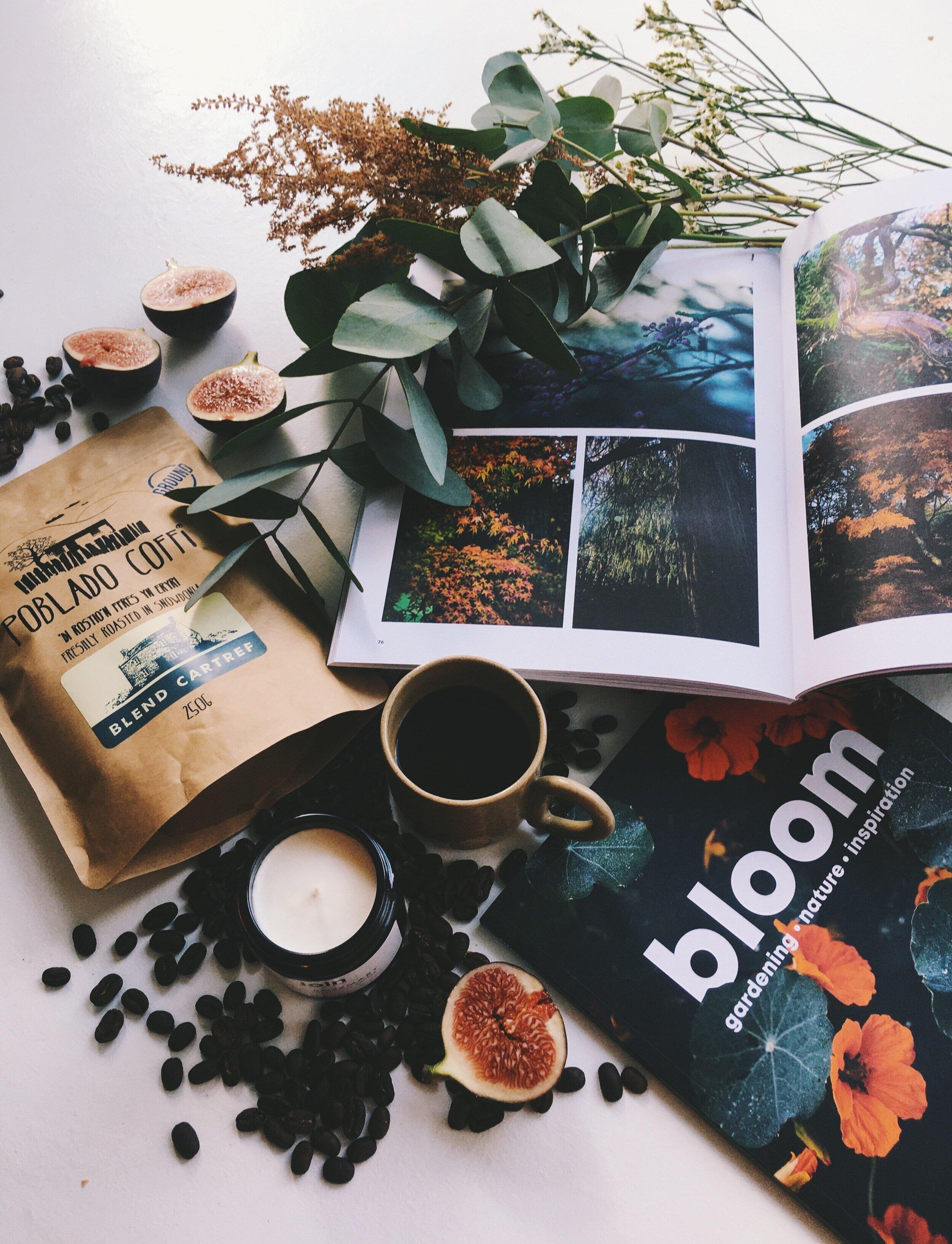 Firain-Autumn-Winter+2019.jpg