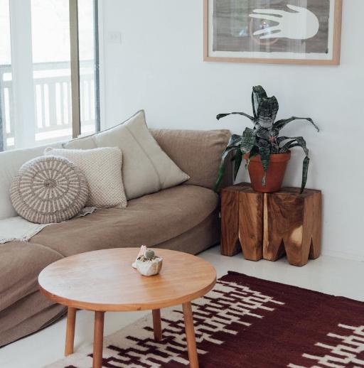 minimal organic interiors, pampa