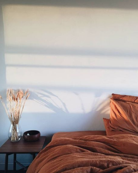 @designlovefest gives us this pretty light on that gorgeous must have burnt orange linen bedding!