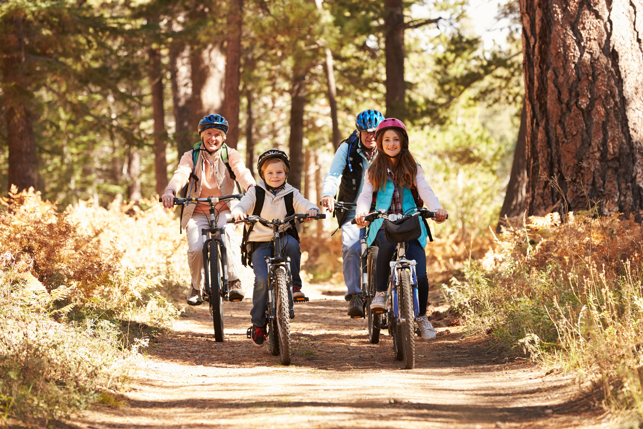 A happy family rides their mountain bikes together on a dirt trail in the woods