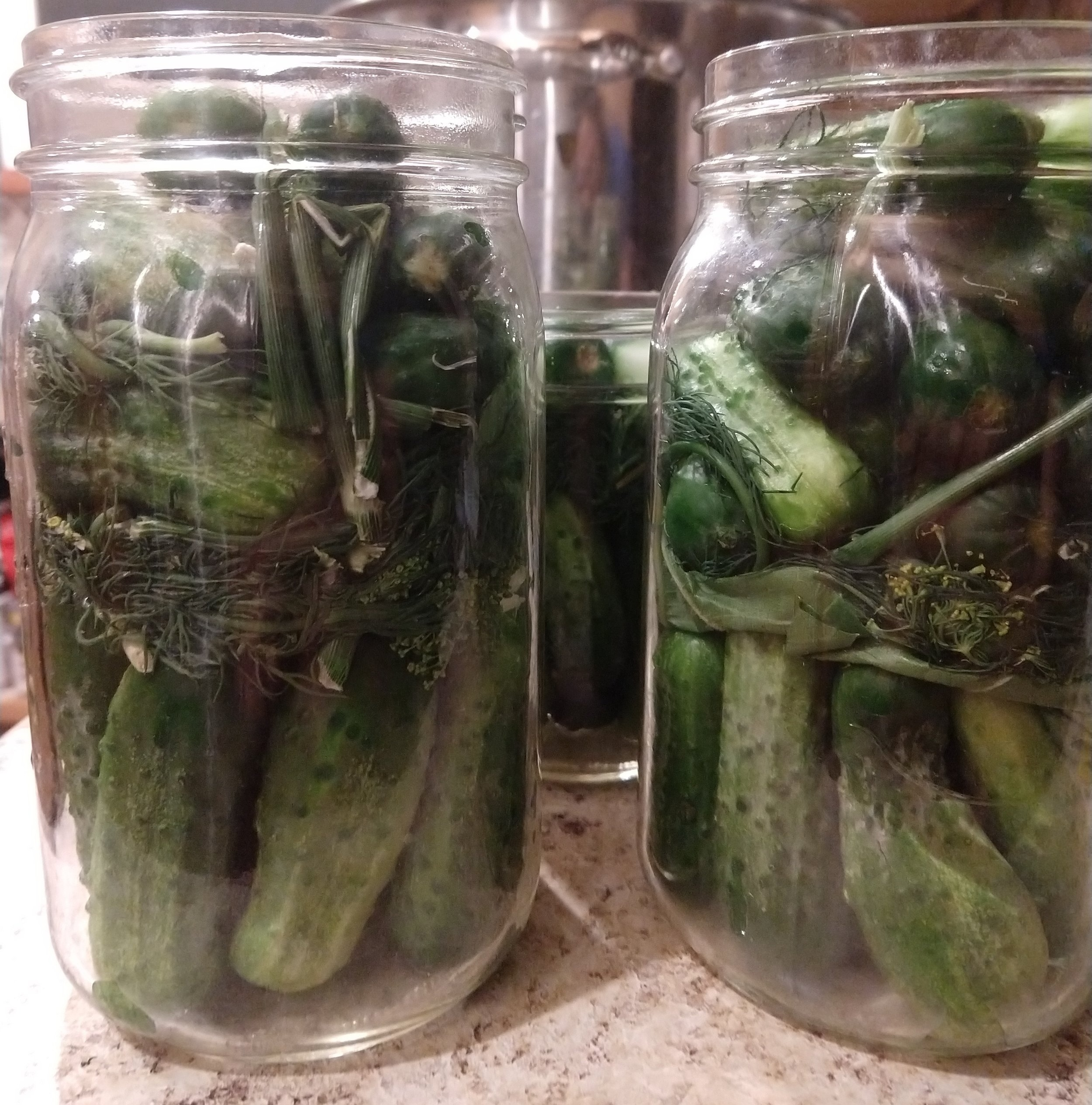 We stuff as many pickles in each jar before adding the brine.