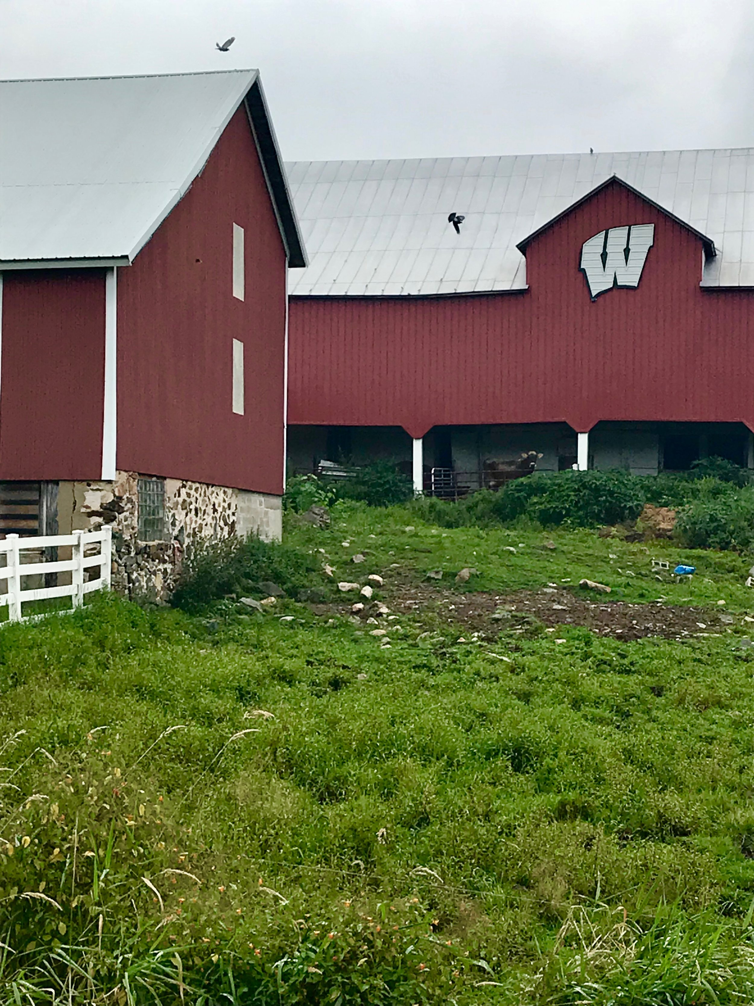 WI barn - 80 mile route only!
