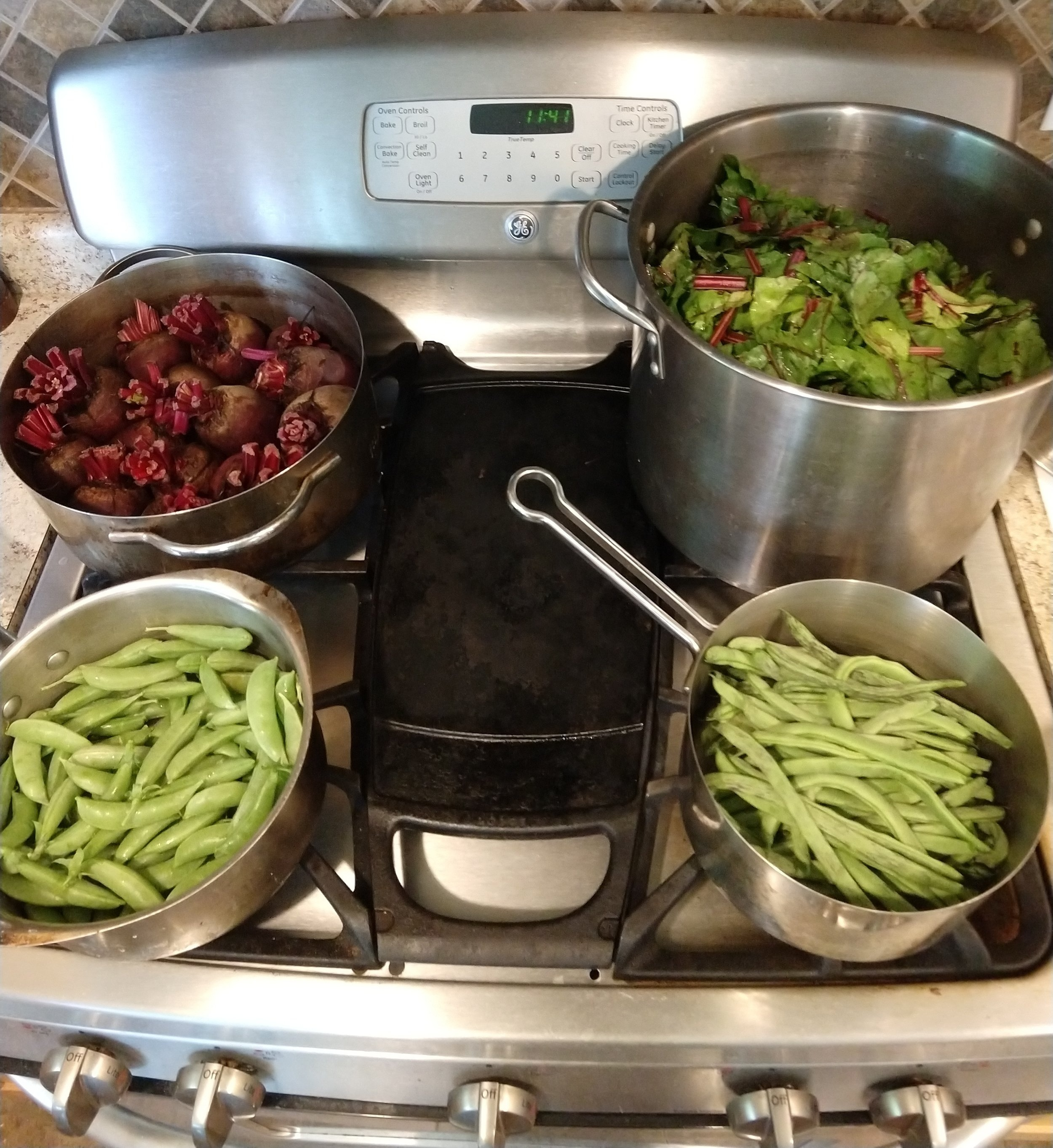 We love our gas stove, but this picking is too much to do all at once. So we'll save the beets for another day.