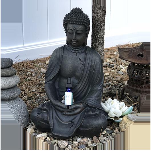SeaCo_Natural_Products_buddha.png