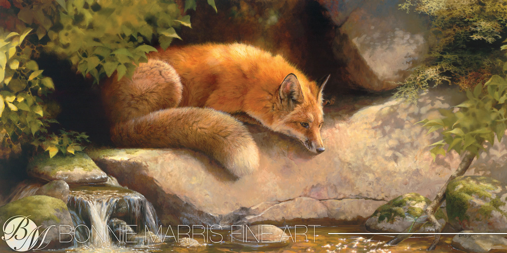 "Contemplating a Dragonfly   ""This red fox is a favorite subject of mine,"" says Bonnie Marris. ""I have painted him and his progeny on the creek behind my studio for many years. The fox's physical brilliance is matched only by the brilliance of his mind. He remains alert and analytical of his surroundings at all times. At this moment he sits, captivated by a dragonfly. Perhaps this is a moment of mutual enchantment."""