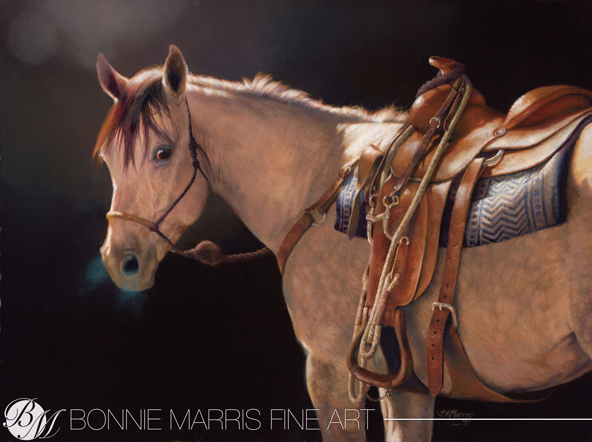 """Jacks High Point Night   """"You never know when a spark which leads to a painting will first appear,"""" Bonnie Marris says. """"I was at an event in California when I saw this amazing horse waiting under the lights on the sidelines. This spectacular horse had a mesmerizing look that I couldn't take my eyes off, as if he had so much to say. As he swept the awards that night, I learned his name was Jack.  """"There's a kind of magic in making a connection with your subject one-on-one rather than as part of a pack or herd. As an artist, when I see this spark in any animal, I can't wait to get back into the studio and capture it. The challenge and real reward is passing that connective spark to the collector."""""""