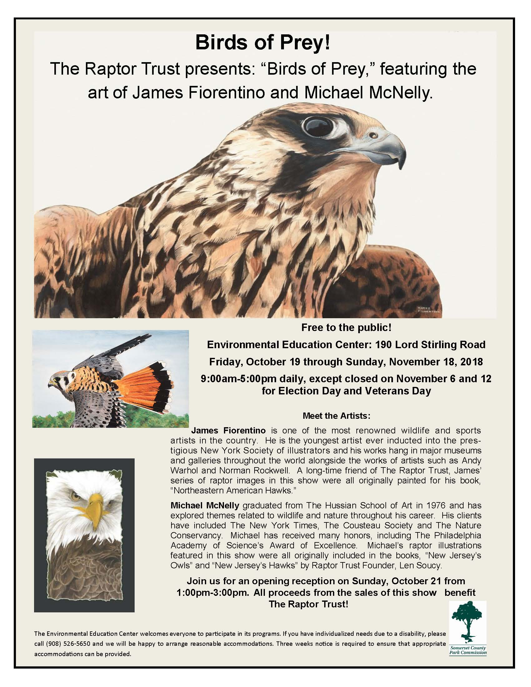 Birds of Prey Flier.jpg
