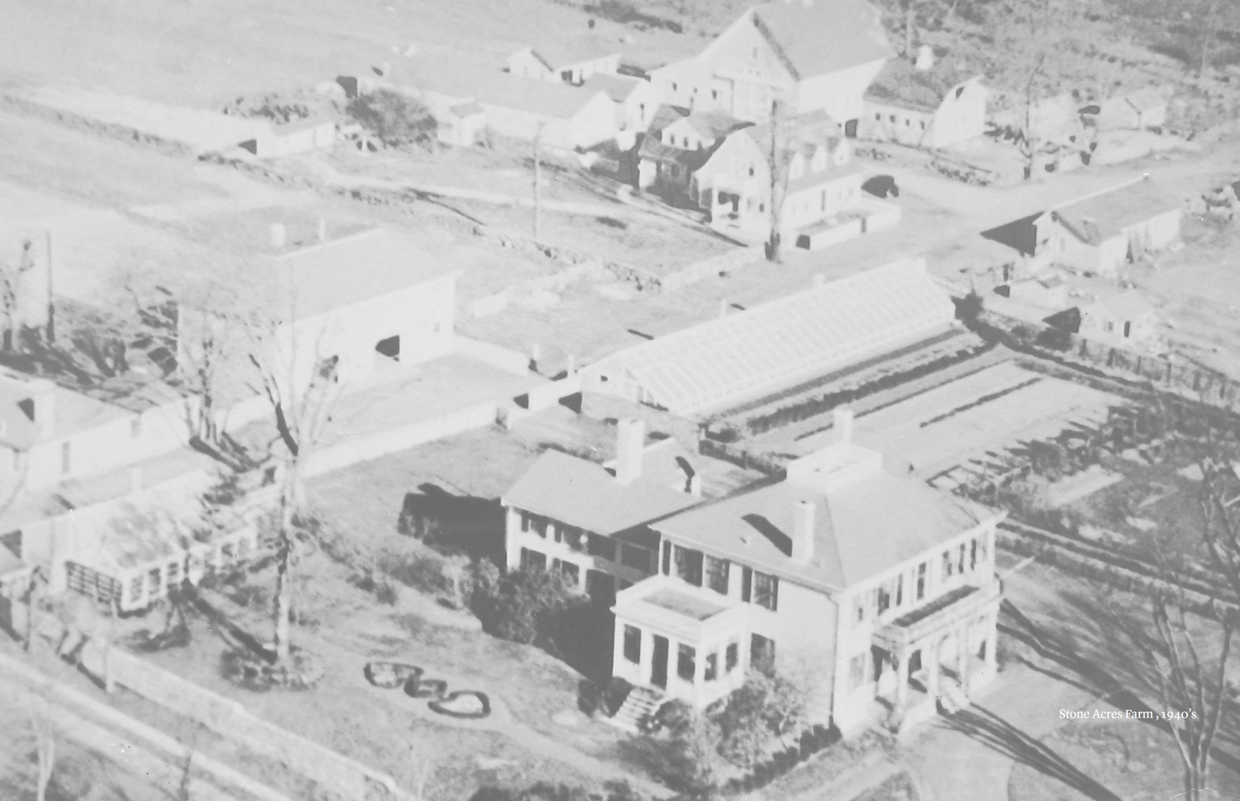 SAF historic photo.PNG