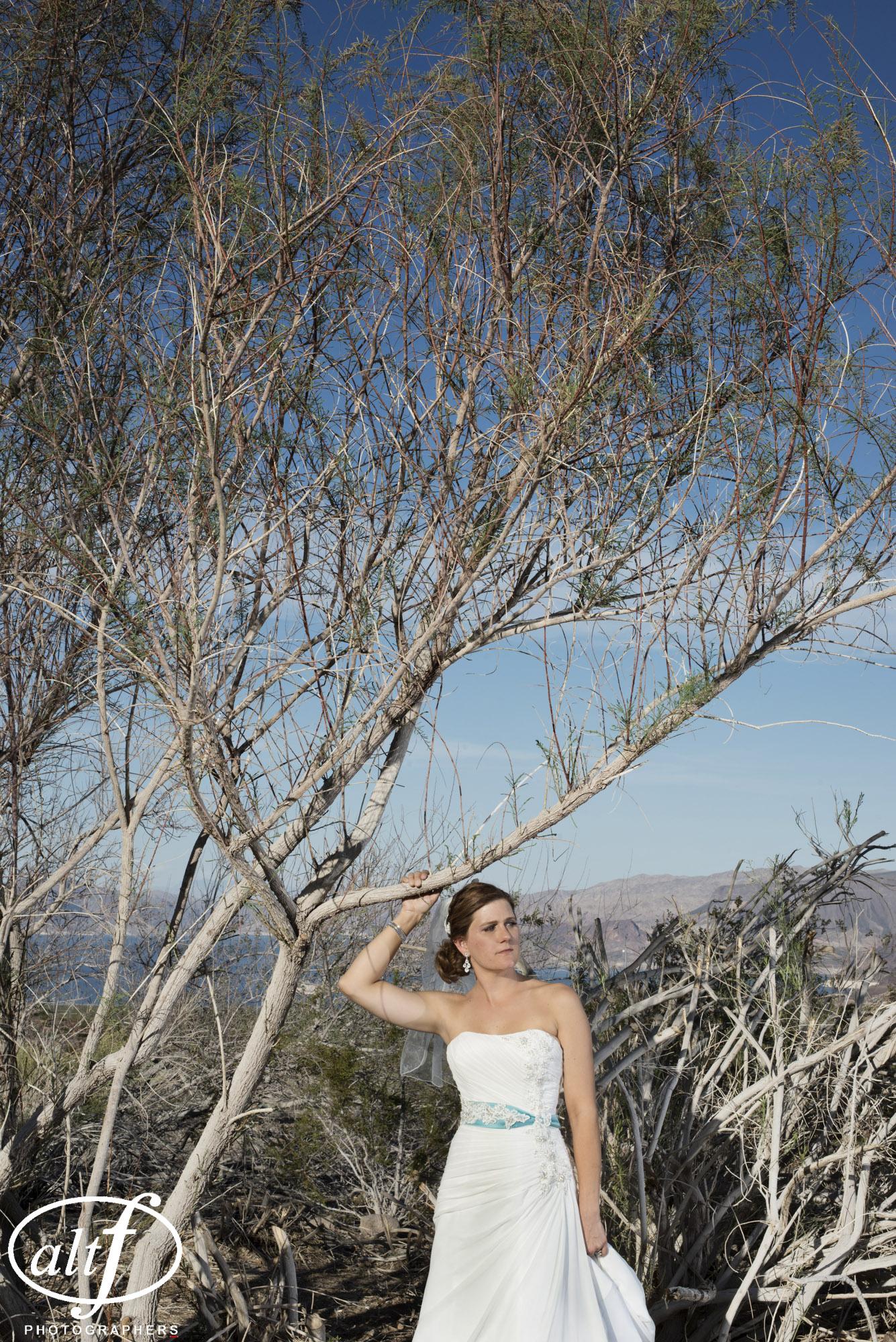 bridal-portrait-hemenway-park-boulder-city