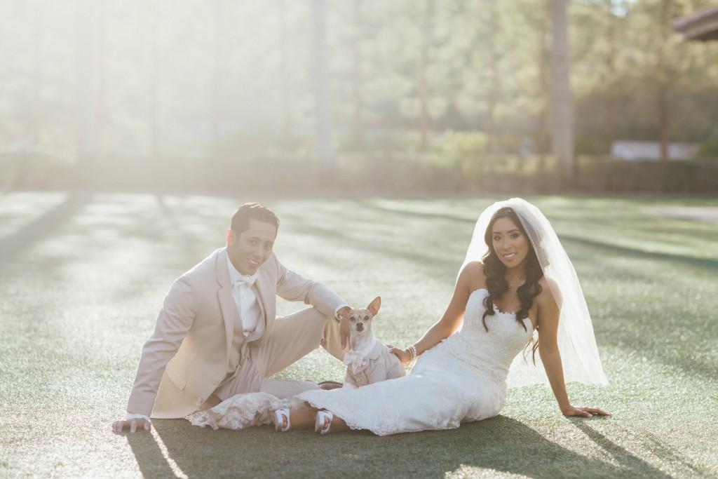 bride-groom-dog-wedding