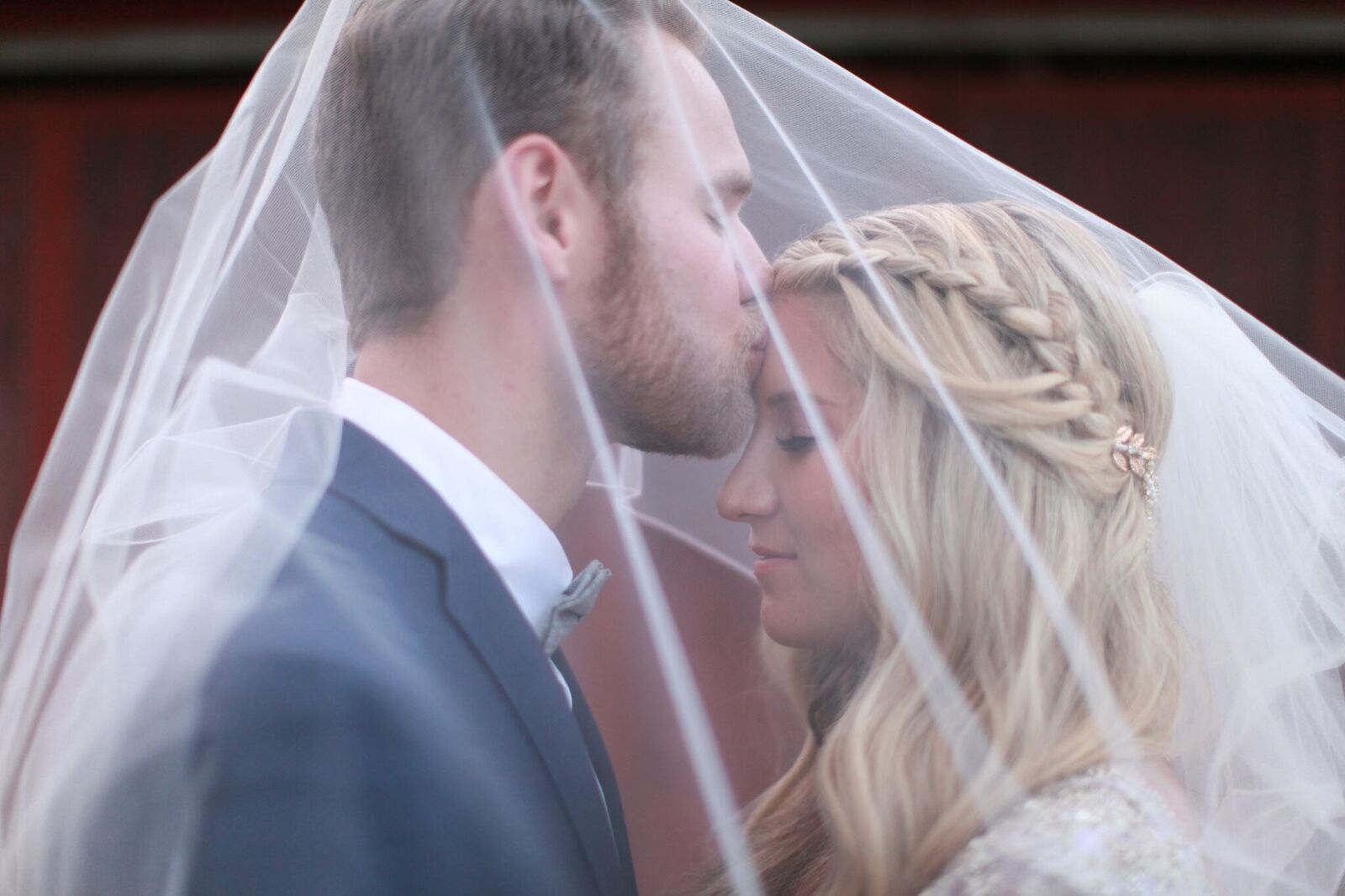 bride and groom. veil, braided hair