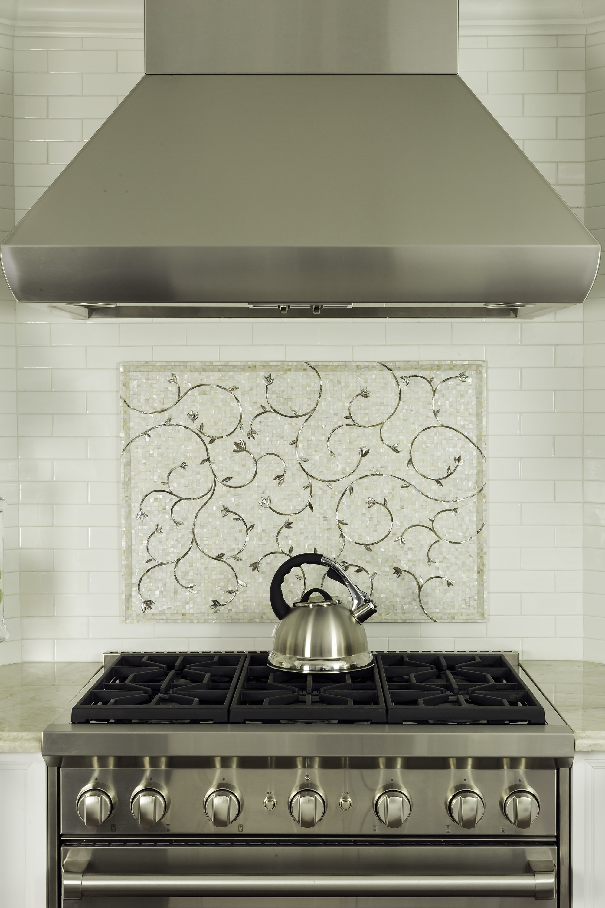 Transitional style kitchen with stainless steel range roven