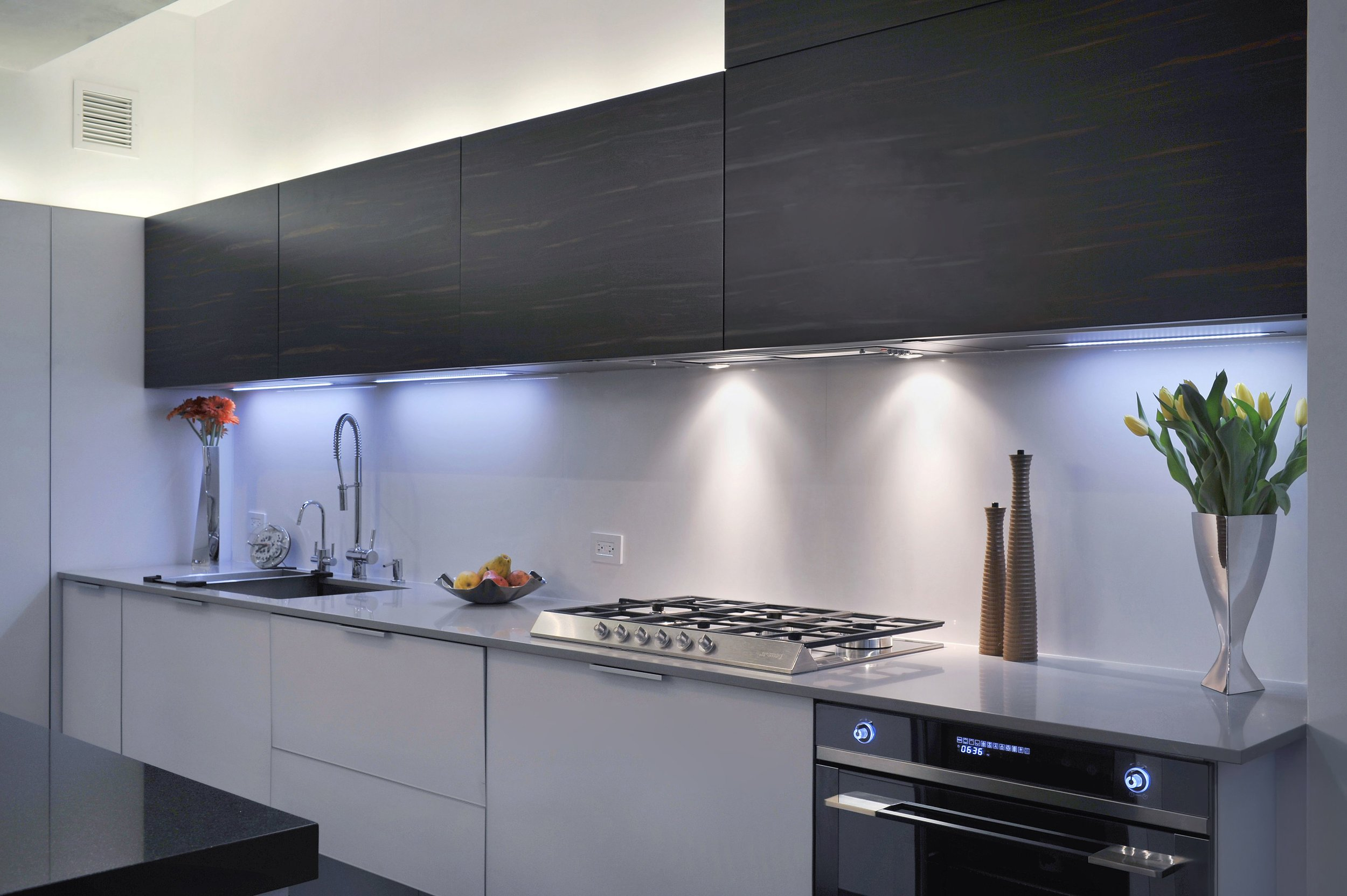 Contemporary style kitchen with stainless range