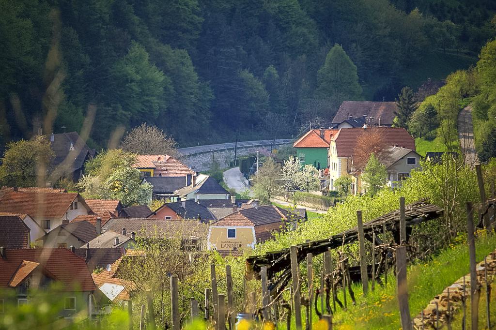winzerdorf_elsarn.jpg