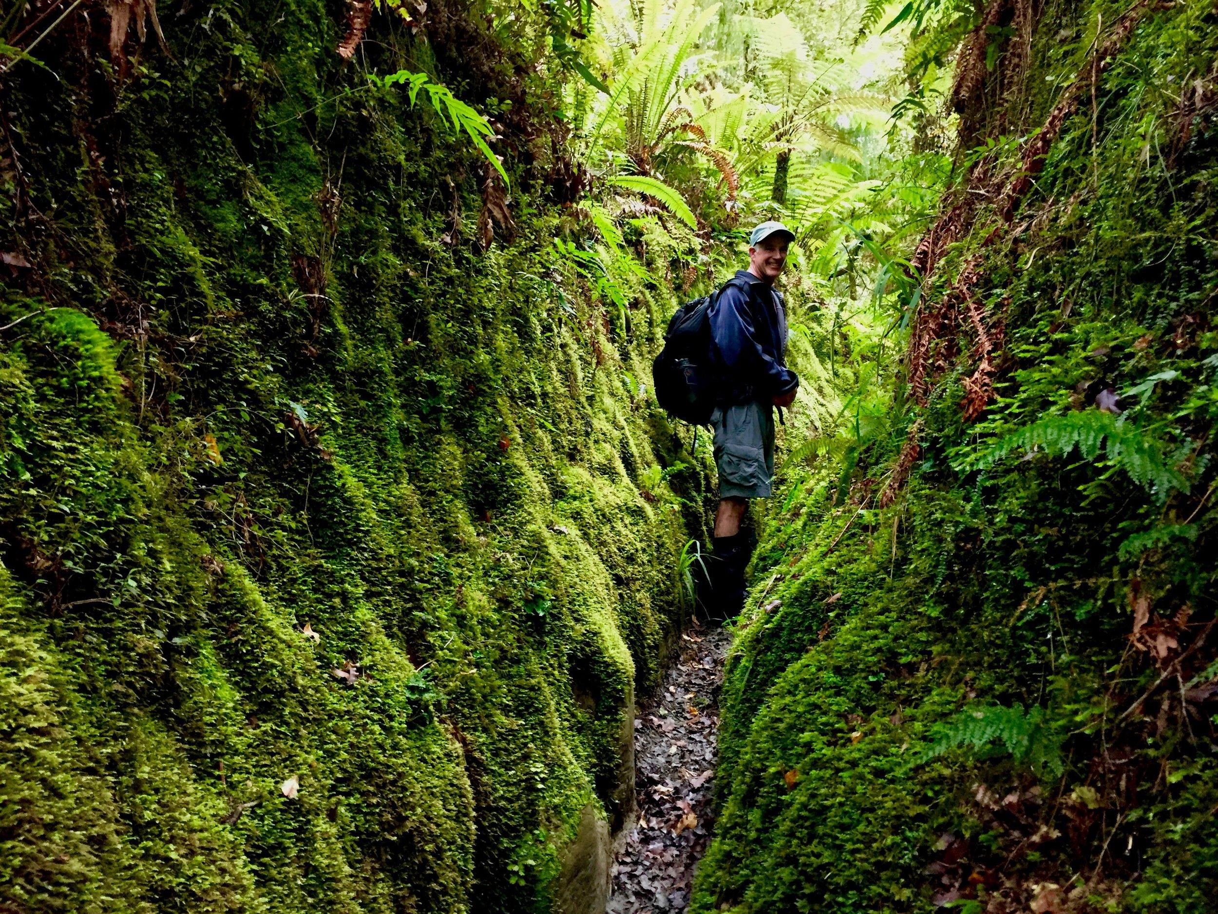 Hiking through New Zealand