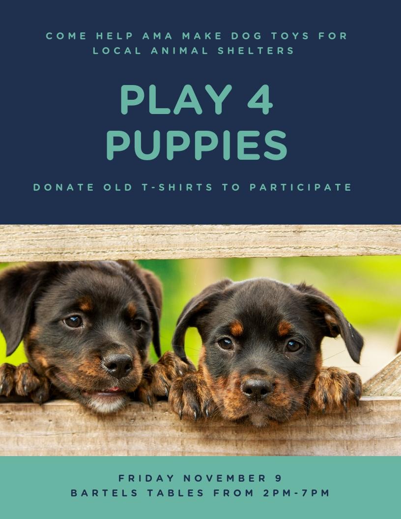 Play 4 Puppies Event 11%2F9%2F18.jpg